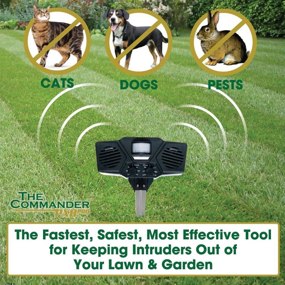 ultrasonic pest repeller will protect your garden from cats, dogs and pests